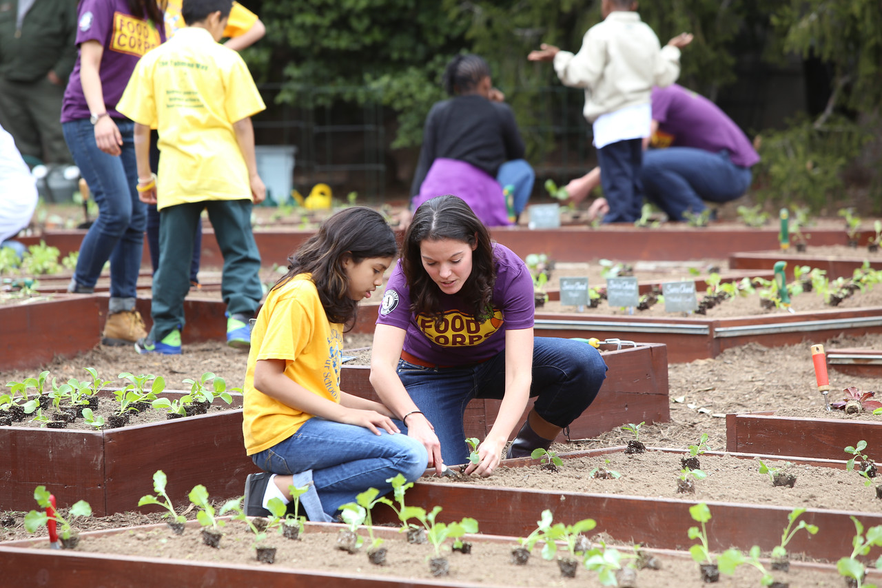 Food Corps member explains planting veggies to a student at the White House Kitchen Garden. Corporation for National and Community Service Photo.