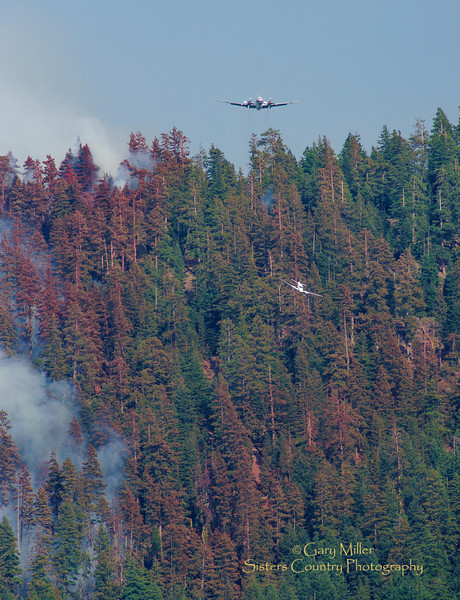 A lead plane brings in air tanker 41 for a roller coaster steep approach and retardant drop just over the lip of Green Ridge on August 6, 2013. The Green Ridge Fire was a lightning caused wildfire located on the east wall Green Ridge in the Metolius Basin just north of Camp Sherman, Oregon near the Allingham Guard Station. The fire started on July 31, 2013 and was taken over by the NorCal Team 1 as part of the Cascade DIvision complex of lightning fires on August 3, 2013. Copyright © 2013 Gary N. Miller, Sisters Country Photography