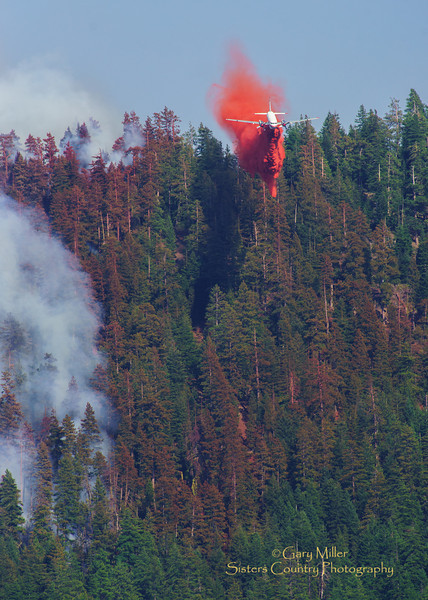 Air tanker 41 performs a roller coaster steep approach and retardant drop just over the lip of Green Ridge on August 6, 2013 to tie in the very upper corner of southeastern fire flank at the Alpha-Bravo division break. The Green Ridge Fire was a lightning caused wildfire located on the east wall Green Ridge in the Metolius Basin just north of Camp Sherman, Oregon near the Allingham Guard Station. The fire started on July 31, 2013 and was taken over by the NorCal Team 1 as part of the Cascade DIvision complex of lightning fires on August 3, 2013. Copyright © 2013 Gary N. Miller, Sisters Country Photography