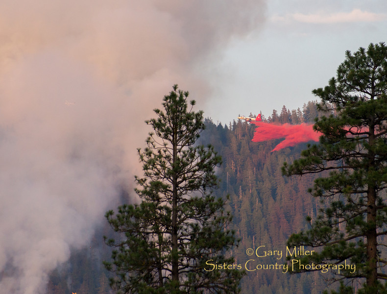 Air tanker operations. The Green Ridge Fire was a lightning caused wildfire located on the east wall Green Ridge in the Metolius Basin just north of Camp Sherman, Oregon near the Allingham Guard Station. The fire started on July 31, 2013 and was taken over by the NorCal Team 1 as part of the Cascade DIvision complex of lightning fires on August 3, 2013. Copyright © 2013 Gary N. Miller, Sisters Country Photography