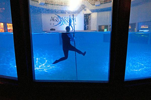 140402 Aquarium 8