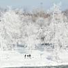 140110 Ice Falls 2