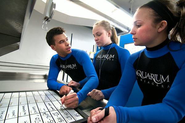 140402 Aquarium 6