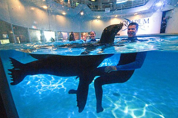 140402 Aquarium 1