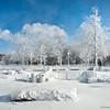 140107 Polar Vortex 4