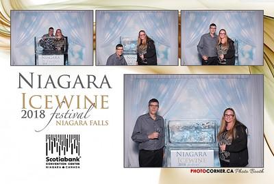 Niagara Ice Wine Festival - 01-27-2018