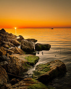 Charles Daley Park Sunset - Lincoln