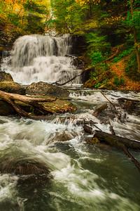Lower Decew Falls