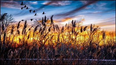 Sunset Lock 11_18-1-Edit-2--S