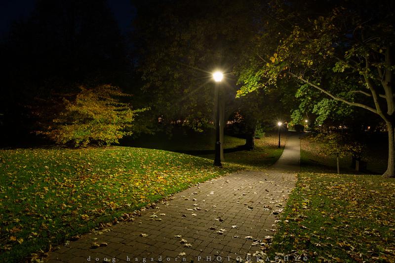 Midnight Stroll (#0371)