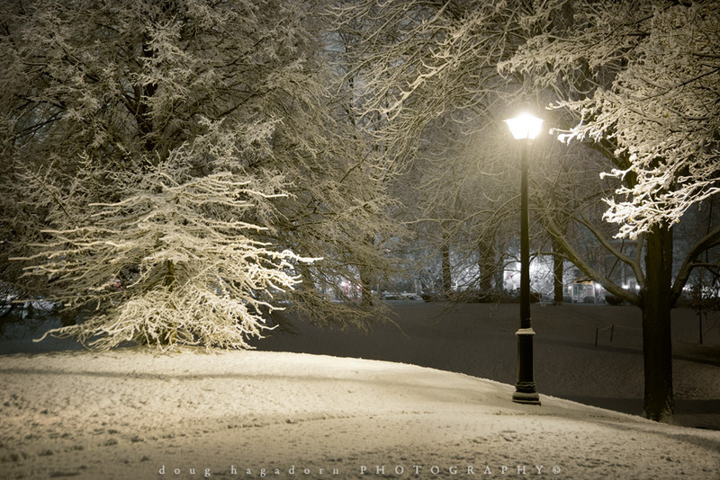 Winter's Magic (#0201)