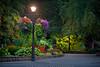 Night View (#0290)