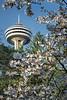Spring at Niagara (#0721)