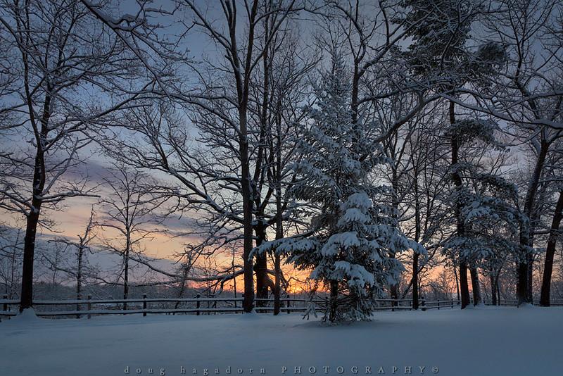 Winter Fresh (#0500)