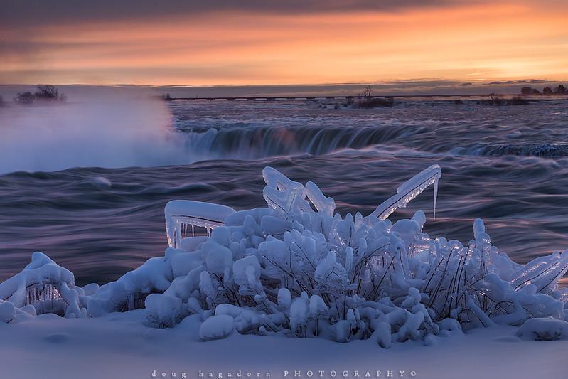 Iced (#0663)