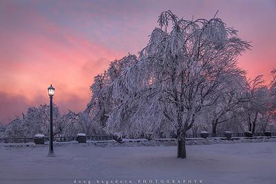 Winter Skies (#0806)