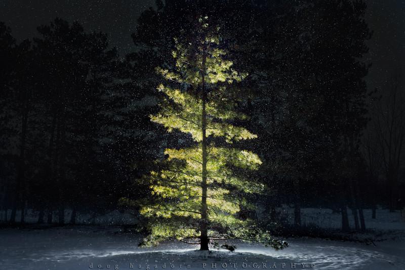Let It Snow (#0357)