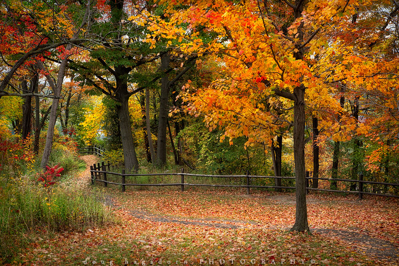 Niagara Parkway Path (#0235)