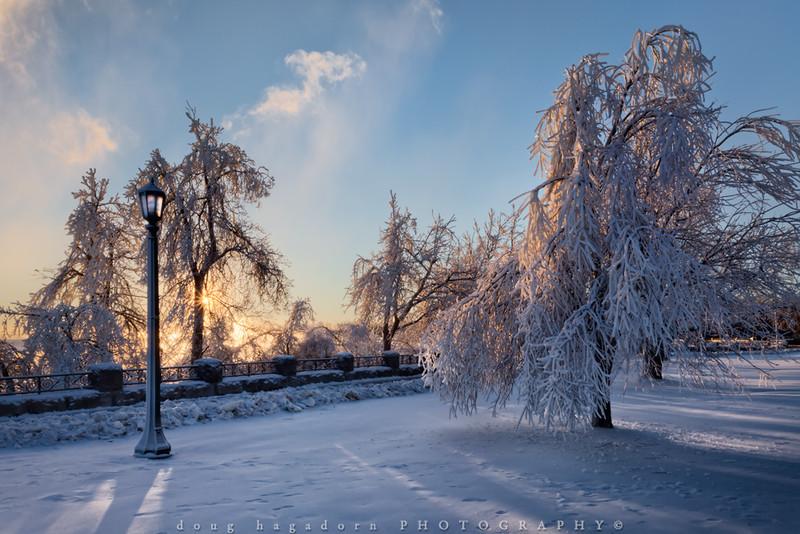 Winter's Beauty (#0240)