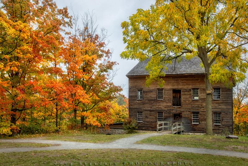 Autumn at Balls Falls (#0474)