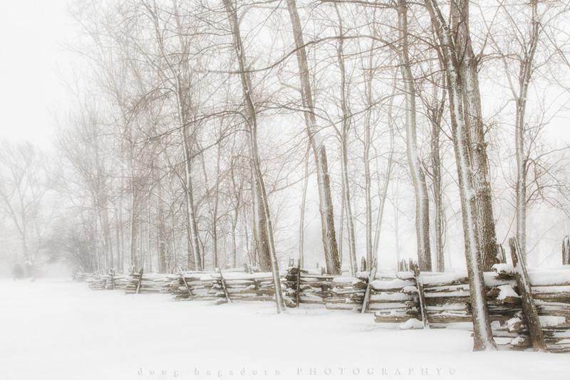 Snow Fence (0082)