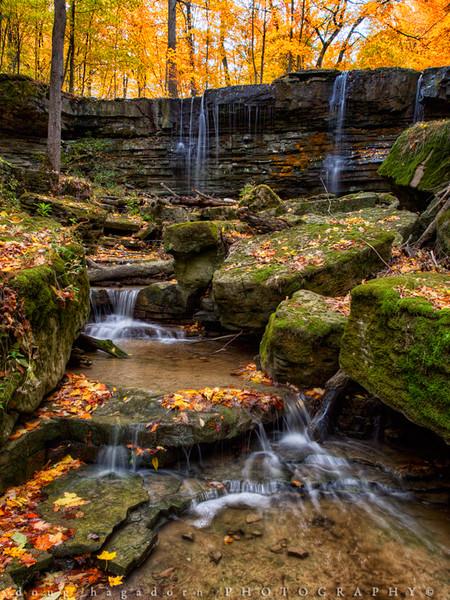 Autumn at Short Hills (#0098)