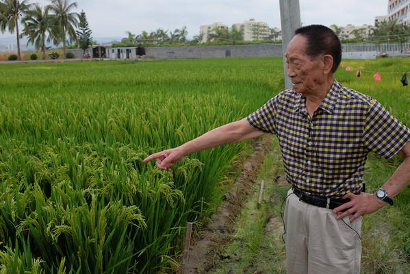 Rice Symposium Sanya April 2014