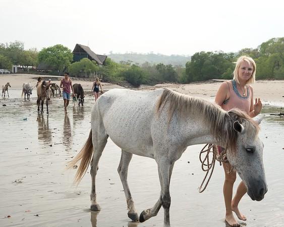 160507_GiganteBay_Horses_006