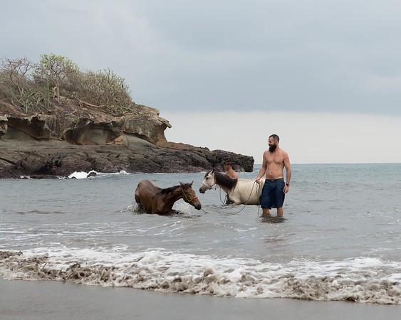 160507_GiganteBay_Horses_027
