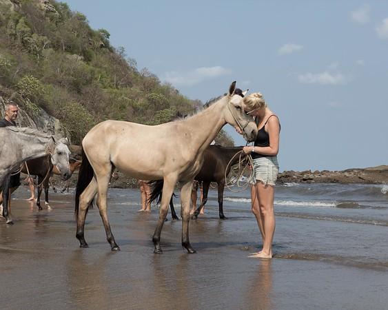 160507_GiganteBay_Horses_047