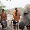 160507_GiganteBay_Horses_066
