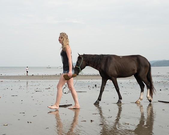 160507_GiganteBay_Horses_008