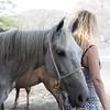 160507_GiganteBay_Horses_079