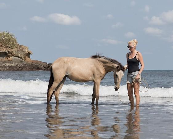 160507_GiganteBay_Horses_055