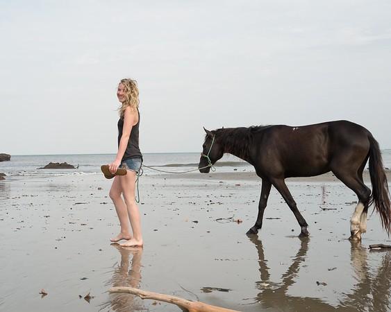160507_GiganteBay_Horses_009