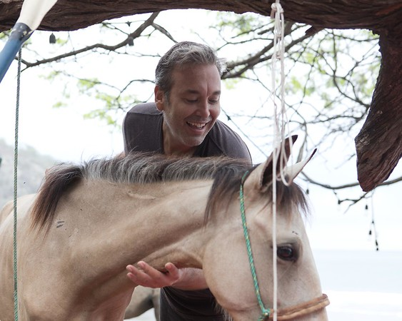 160507_GiganteBay_Horses_071