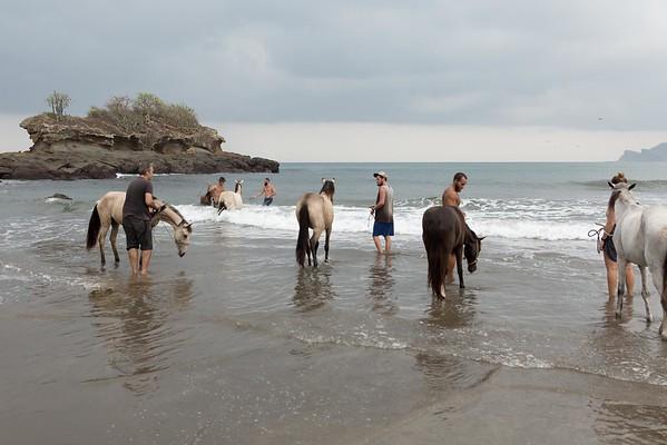 160507_GiganteBay_Horses_024