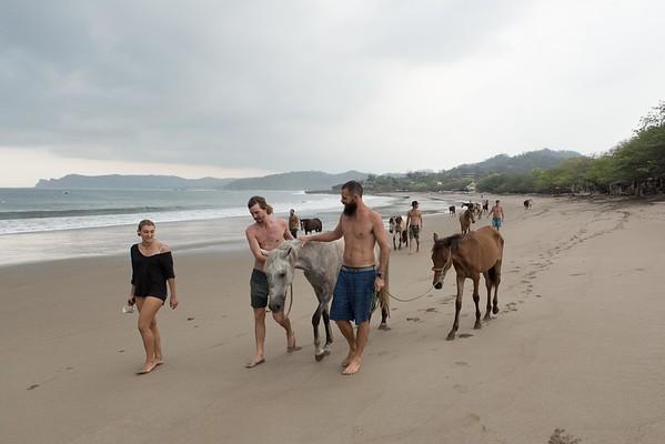160507_GiganteBay_Horses_018