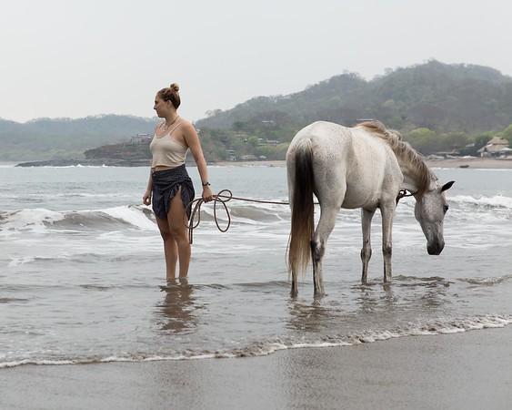 160507_GiganteBay_Horses_025