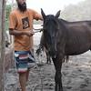 160507_GiganteBay_Horses_077