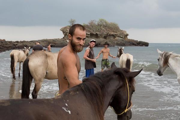 160507_GiganteBay_Horses_023