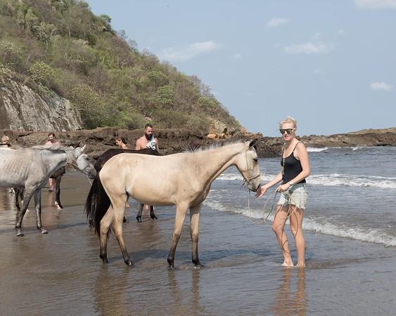 160507_GiganteBay_Horses_046