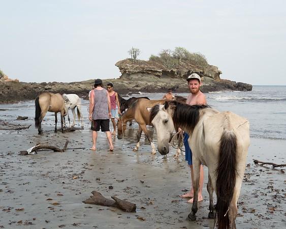 160507_GiganteBay_Horses_011