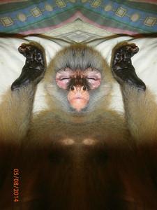 I AM SORIYA WATCHING YOU AS I SLEEP