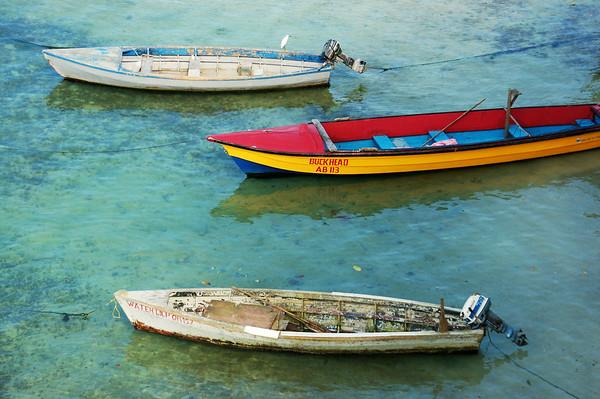 JAMAICAN COLOUR