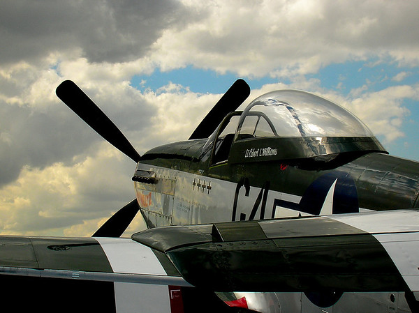 READY FOR DOGFIGHT