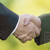 P5.5 / Photo to accompany figure 5.2 / Choosing a business partner.  Choice  13 of 14