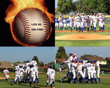 Baseball Collage1