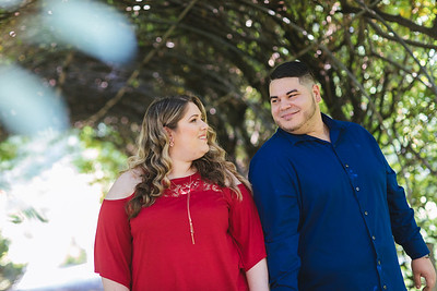0015_Nicole_Phil_engagement_ReadyToGoProductions com-
