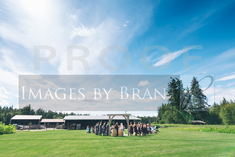 Nisqually_Springs_Yelm_wedding_photographer_0905DS3_4128-HDR-3